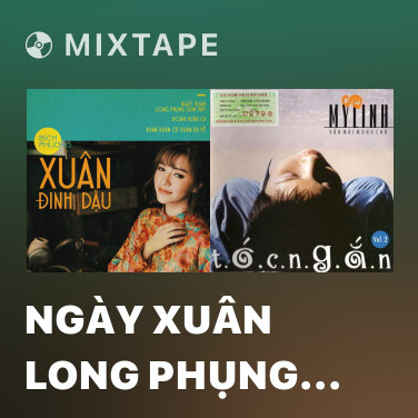 Mixtape Ngày Xuân Long Phụng Sum Vầy - Various Artists