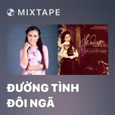 Radio Đường Tình Đôi Ngã - Various Artists