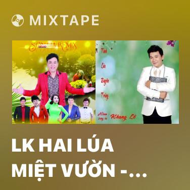 Radio LK Hai Lúa Miệt Vườn - Dây Đủng Đỉnh Buồn - Anh Ba Khía (Remix) - Various Artists