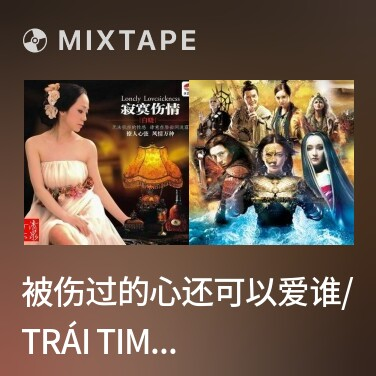 Mixtape 被伤过的心还可以爱谁/ Trái Tim Từng Bị Tổn Thương Còn Có Thể Yêu Ai - Various Artists