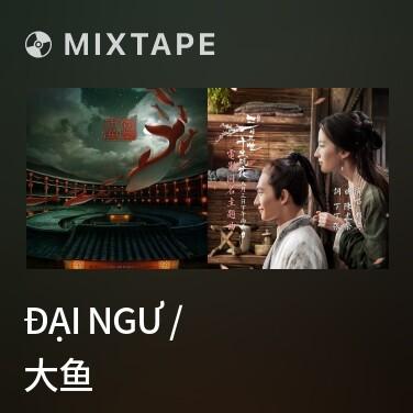 Radio Đại Ngư / 大鱼 - Various Artists