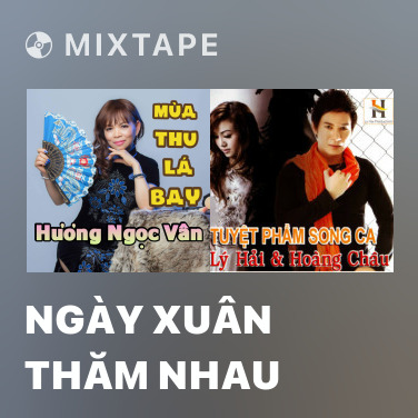 Mixtape Ngày Xuân Thăm Nhau - Various Artists