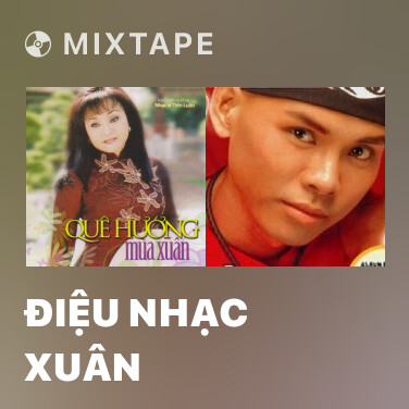 Radio Điệu Nhạc Xuân - Various Artists