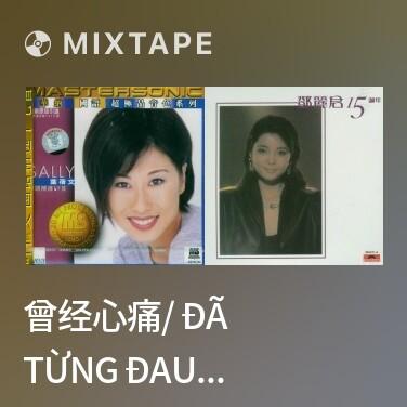 Mixtape 曾经心痛/ Đã Từng Đau Lòng - Various Artists