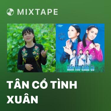 Mixtape Tân Cổ Tình Xuân - Various Artists