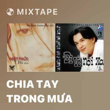 Mixtape Chia Tay Trong Mưa - Various Artists