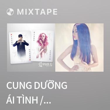Mixtape Cung Dưỡng Ái Tình / 爱的供养 - Various Artists