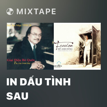Mixtape In Dấu Tình Sau - Various Artists