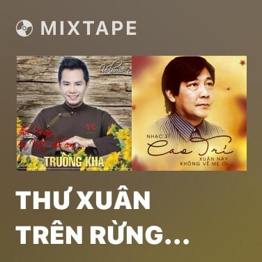 Radio Thư Xuân Trên Rừng Cao - Various Artists