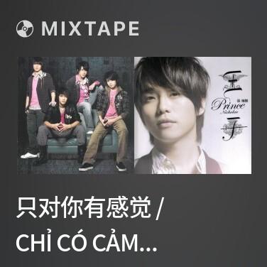 Mixtape 只对你有感觉 / Chỉ Có Cảm Giác Đối Với Em - Various Artists