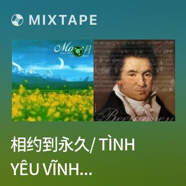 Mixtape 相约到永久/ Tình Yêu Vĩnh Cửu - Various Artists