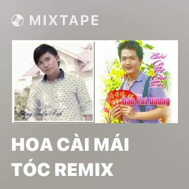 Radio Hoa Cài Mái Tóc Remix - Various Artists