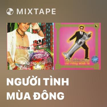 Mixtape Người Tình Mùa Đông - Various Artists