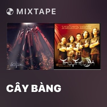 Radio Cây Bàng - Various Artists