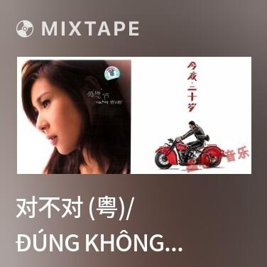 Mixtape 对不对 (粤)/ Đúng Không (Quảng) - Various Artists