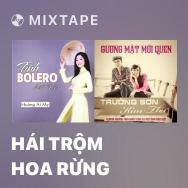 Mixtape Hái Trộm Hoa Rừng - Various Artists