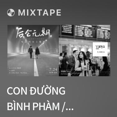 Mixtape Con Đường Bình Phàm / 平凡之路 - Various Artists