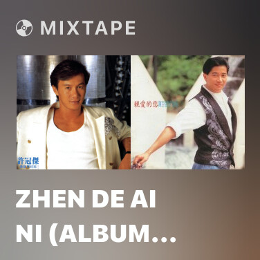 Mixtape Zhen De Ai Ni (Album Version) - Various Artists