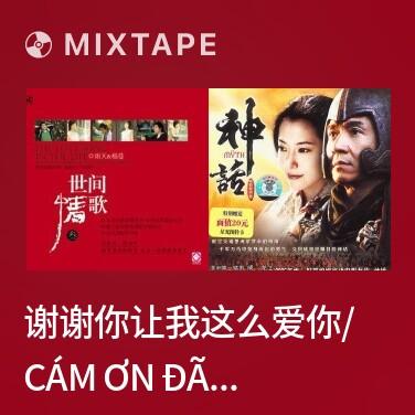 Mixtape 谢谢你让我这么爱你/ Cám Ơn Đã Để Em Yêu Anh Như Vậy - Various Artists