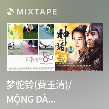 Mixtape 梦驼铃(费玉清)/ Mộng Đà Linh - Various Artists