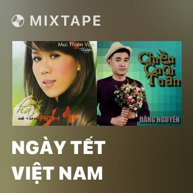 Radio Ngày Tết Việt Nam - Various Artists