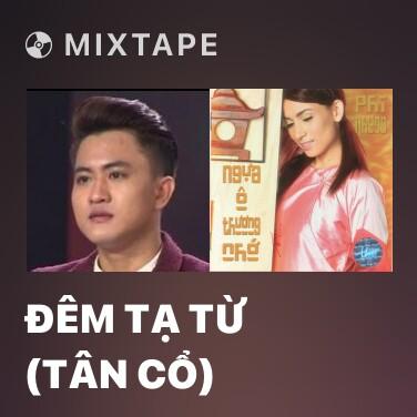 Mixtape Đêm Tạ Từ (Tân Cổ) - Various Artists
