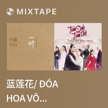 Mixtape 蓝莲花/ Đóa Hoa Vô Thường -