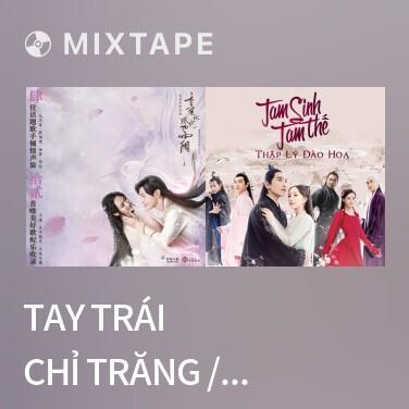Radio Tay Trái Chỉ Trăng / 左手指月 - Various Artists
