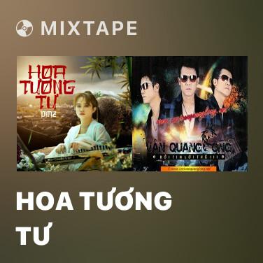 Mixtape Hoa Tương Tư - Various Artists