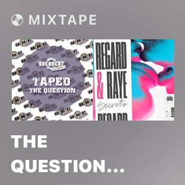 Radio The Question (Asino di Medico Remix) - Various Artists