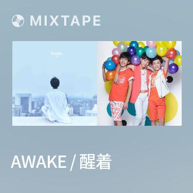 Mixtape Awake / 醒着 - Various Artists