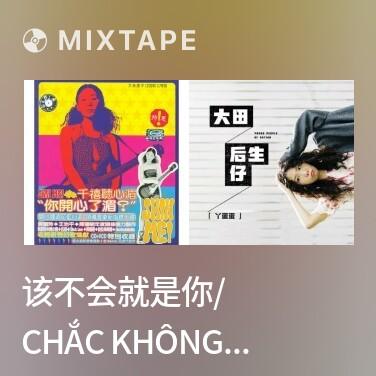 Radio 该不会就是你/ Chắc Không Phải Anh Đâu - Various Artists