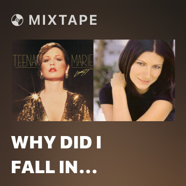 Mixtape Why Did I Fall In Love With You (Album Version) - Various Artists
