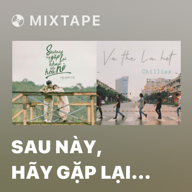 Radio Sau Này, Hãy Gặp Lại Nhau Khi Hoa Nở - Various Artists