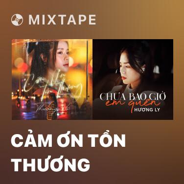 Mixtape Cảm Ơn Tổn Thương - Various Artists