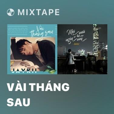 Mixtape Vài Tháng Sau - Various Artists