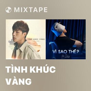 Mixtape Tình Khúc Vàng - Various Artists
