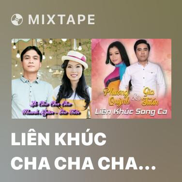 Mixtape Liên Khúc Cha Cha Cha Hái Hoa Rừng Cho Em - Various Artists