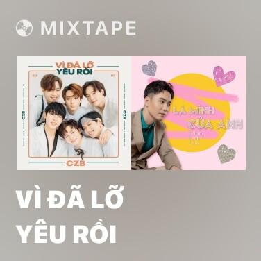 Mixtape Vì Đã Lỡ Yêu Rồi - Various Artists