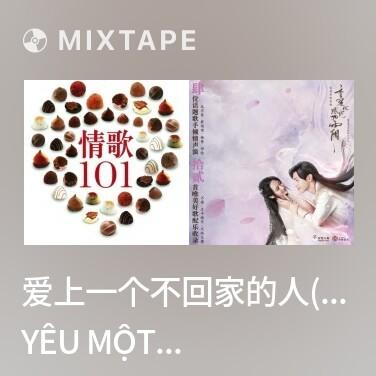 Mixtape 爱上一个不回家的人(林忆莲)/ Yêu Một Người Không Muốn Về Nhà - Various Artists