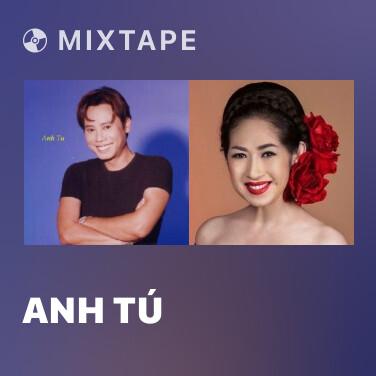 Radio Anh Tú - Various Artists