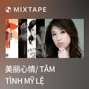 Mixtape 美丽心情/ Tâm Tình Mỹ Lệ - Various Artists