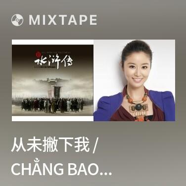 Radio 从未撇下我 / Chẳng Bao Giờ Để Ý Đến Tôi - Various Artists