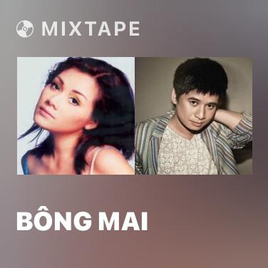 Radio Bông Mai - Various Artists