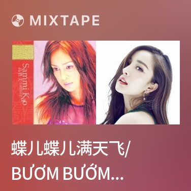 Mixtape 蝶儿蝶儿满天飞/ Bươm Bướm Bay Khắp Trời - Various Artists