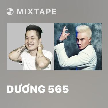 Radio Dương 565 - Various Artists