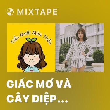 Mixtape Giấc Mơ Và Cây Diệp Anh Đào - Various Artists