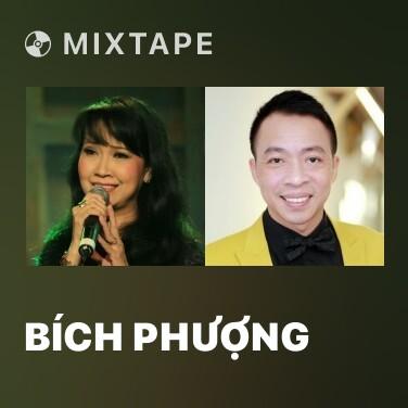 Radio Bích Phượng - Various Artists