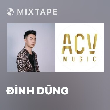 Mixtape Đình Dũng - Various Artists