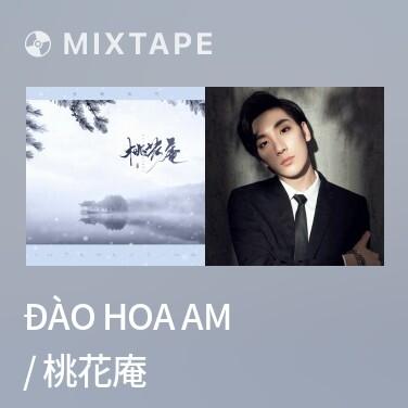 Mixtape Đào Hoa Am / 桃花庵 - Various Artists